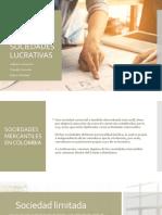 SOCIEDADES LUCRATIVAS.pptx