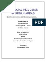Fin Inclusion Final