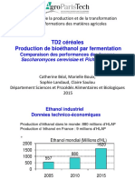 SPT_TD_Transformation_Production_bioethanol_2015