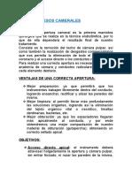 Acceso cameral en piezas  anteriores (1).docx