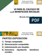 PAUTAS PARA EL CALCULO BENEFICIOS SOCIALES - Ricardo Herrera Vasquez.pps