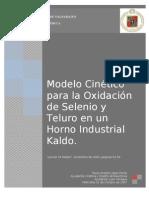 Modelo Cinético para la Oxidación de Selenio y Teluro en un Horno Industrial Kaldo.