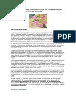 Efecto de probióticos en el alimento de las cerdas sobre los parámetros productivos de lechones
