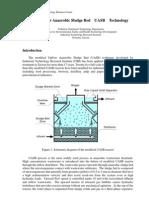Publication UASB+Technology