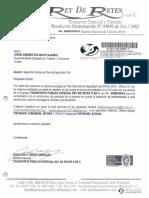 33 PESV  y Radicado.pdf