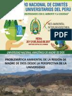 2problemc3a1tica-ambiental-de-la-regic3b3n-de-madre-de-dios-desde-la-perspectiva-de-la-universidad