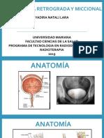 CISTOGRAFIA RETROGRADA Y MICCIONAL.pptx