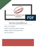 APA ACTO JURÍDICO3