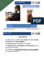 17 -  NIIF para Pyme