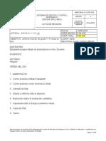 ACTA DE REUNIÒN primera on line  7-4