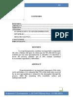 DUPTICO 04HG-JAVIER MEZA-2020-I