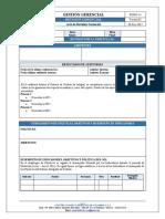 FOGG-14 Acta Revisión Gerencial v02.docx