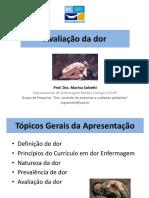 AVALIAÇÃO DA DOR AIF 2019.pdf