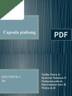 BINAHONG dan bisnis plan.pptx
