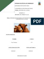 Tenelema_Victor_Enfermedades metabolicas.pdf