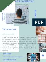 10 Plan comercial empresa objeto de estudio pdf.pdf