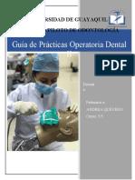 Guía de Prácticas Operatoria Dental II