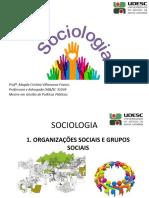 Aula 04 - Organizações Sociais e Grupos Sociais