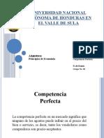 Competencia Perfecta No.10.pptx