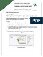 Guevara_Odalis_Funciones_Correccion.pdf
