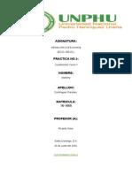 Cuestionario tema V-practica no.5 -Marleny Dominguez-16-1665.docx