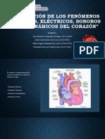 Integración de los fenómenos del corazón