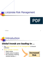 2 Corporate Risk Mgmt.ppt