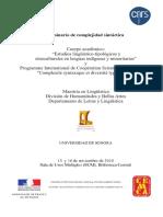 Seminario-de-complejidad-sintactica-2010.pdf