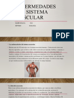 429811785-Enfermedades-Del-Sistema-Muscular.pptx