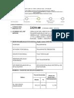 FORMATO SNIP 04.docx