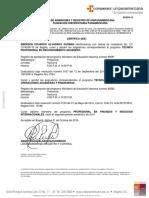 ALVARADO GUZMAN EMERSON EDUARDO   RC084-19_firmado