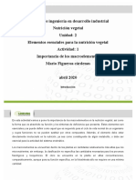 Andamio_Importancia de los macroelementos