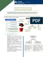 1° Reino Plantae Caracteristicas y clasificación GT.docx