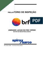 RELATORIO GERAL RECUPERAÇÃO ENERGETICA BRF LRV INDUSTRIALIZADOS REV00.pdf