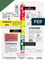 Infografia Practica investigativa