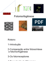 Fotomorfogenese.pdf