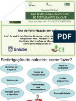 Palestra André Fernandes.pdf