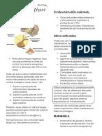Anti-inflamatórios Esteroides.pdf