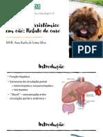 Shunt portossistêmico em cão