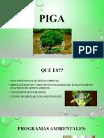 presentacion PIGA