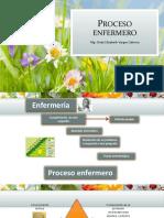 PROCESO ENFERMERO .pdf