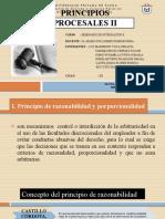 PRINCIPIOS PROCESALES II.pptx