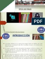 UNIDAD II -Tipo de Pieles.pdf