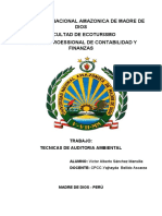 Documento piti