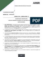 Ejemplo-de-simulacro-MIR.pdf