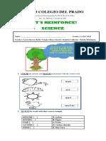 TALLER SCIENCE.pdf