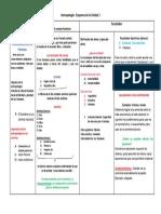 Esquema Unidad 1 Antropología.docx
