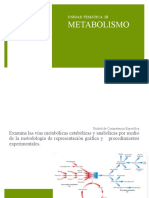 3.Metabolismo.ppt