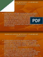 HABITATUL RURAL.pdf
