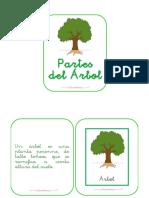 partes-del-c3a1rbol-librito-para-taller